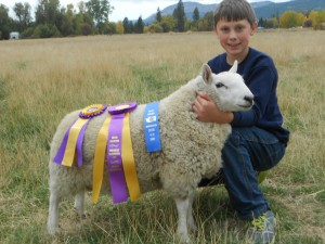 Ivan the Great An Outstanding Grand Champion